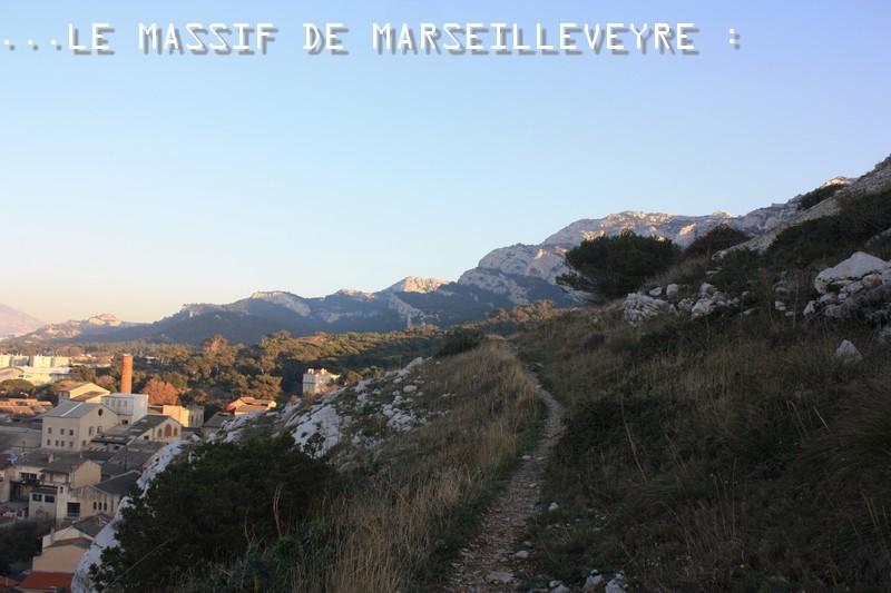 IMG_9314-massif