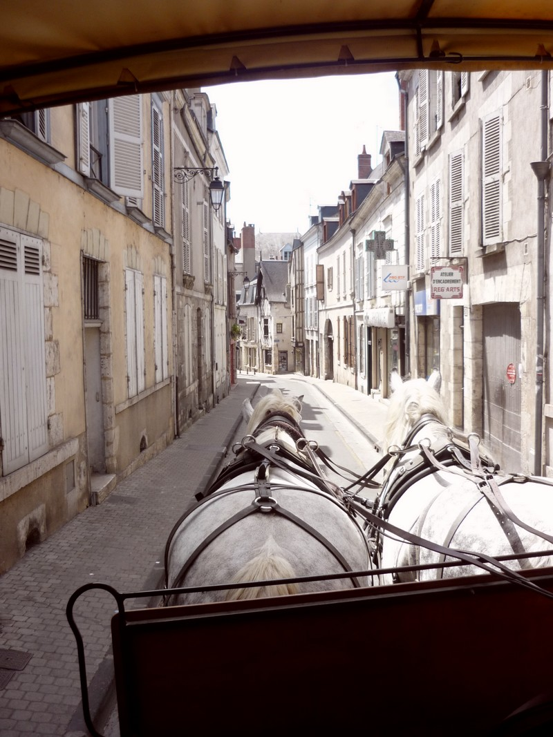 Blois, ville-résidence royale