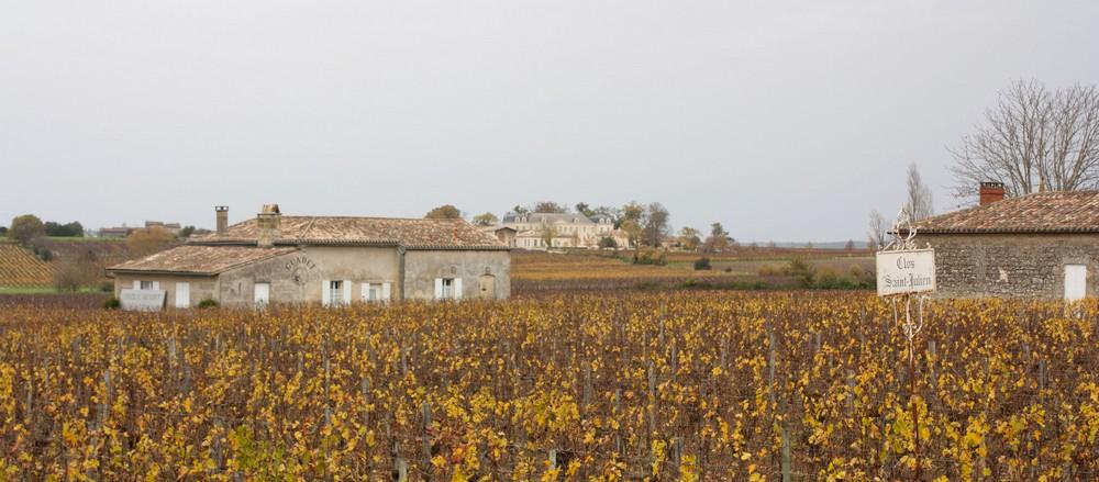 Saint-Emilion-novembre (1)