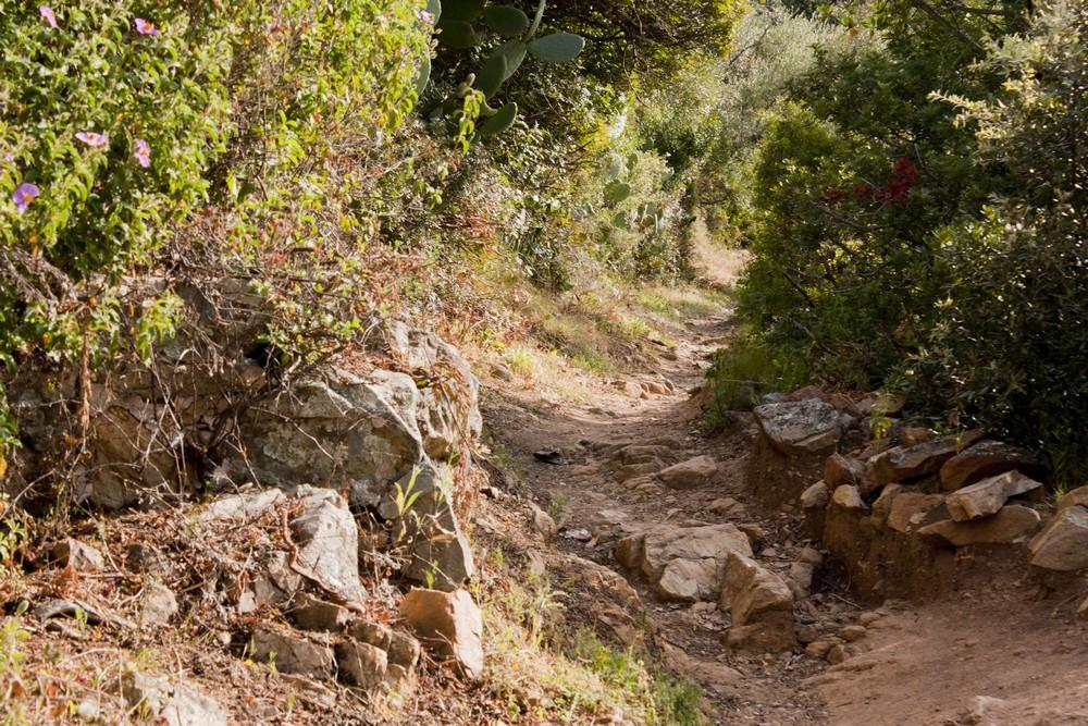 Sentier des cretes Ajaccio (1)