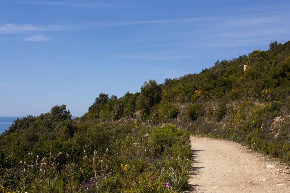Sentier des cretes Ajaccio (14)
