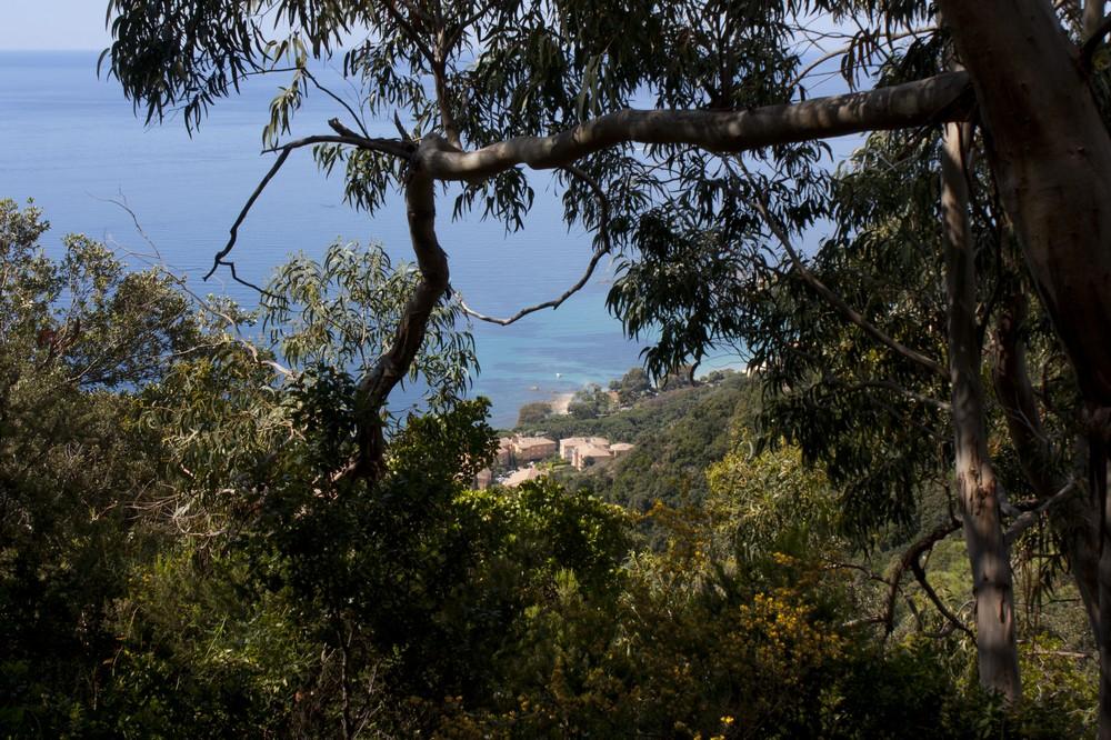 Sentier des cretes Ajaccio (21)