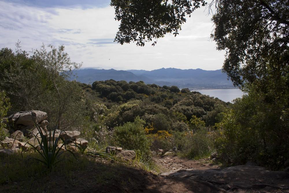 Sentier des cretes Ajaccio (8)