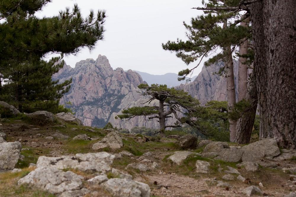 Col de Bavella (6)