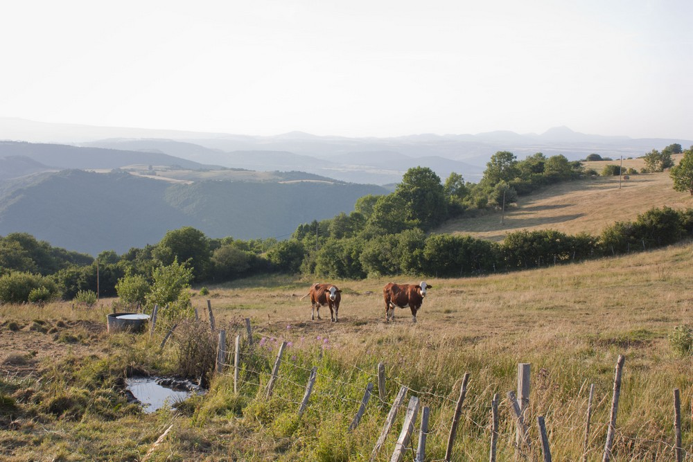 Auvergne et moi (1)