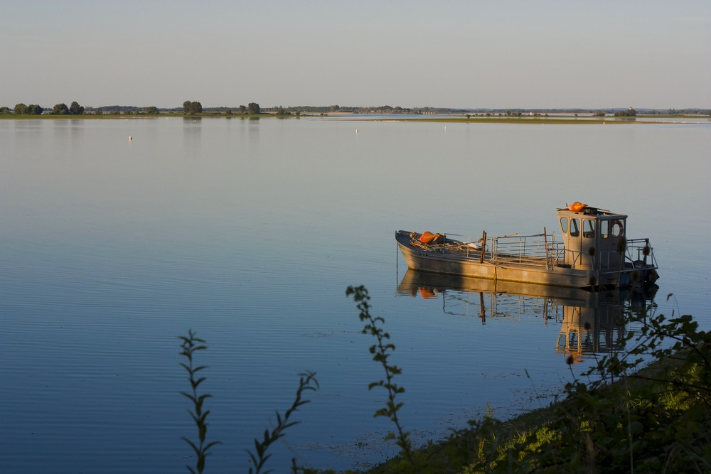 Lac du Der La Boucle Voyageuse (10)