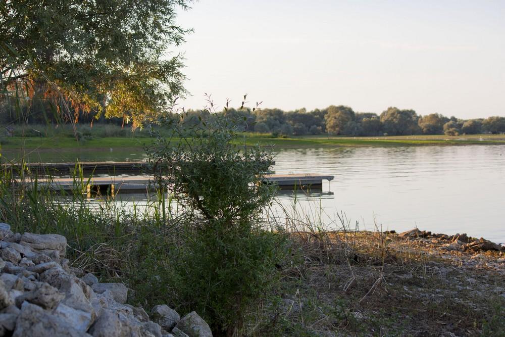 Lac du Der La Boucle Voyageuse (15)
