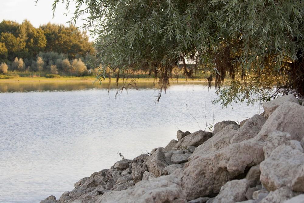 Lac du Der La Boucle Voyageuse (16)