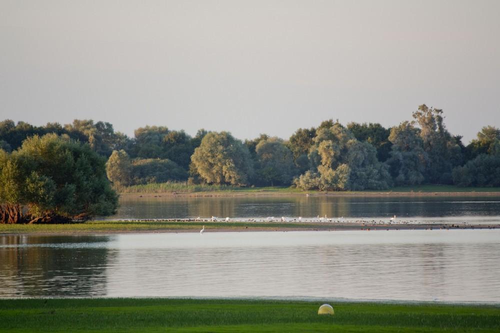 Lac du Der La Boucle Voyageuse (24)