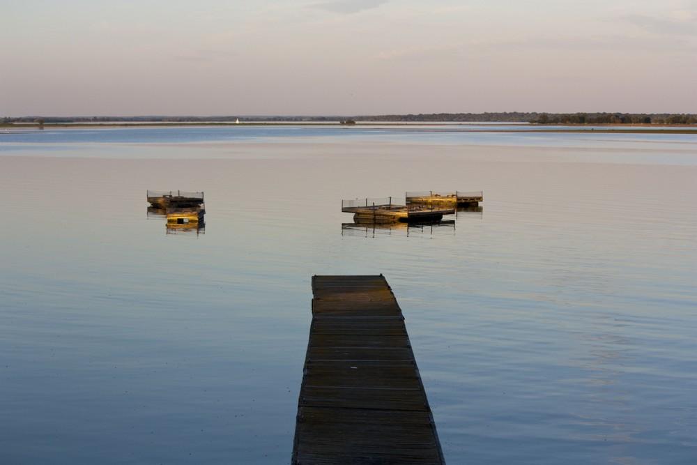 Lac du Der La Boucle Voyageuse (26)