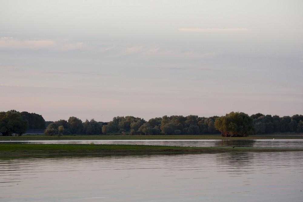 Lac du Der La Boucle Voyageuse (27)