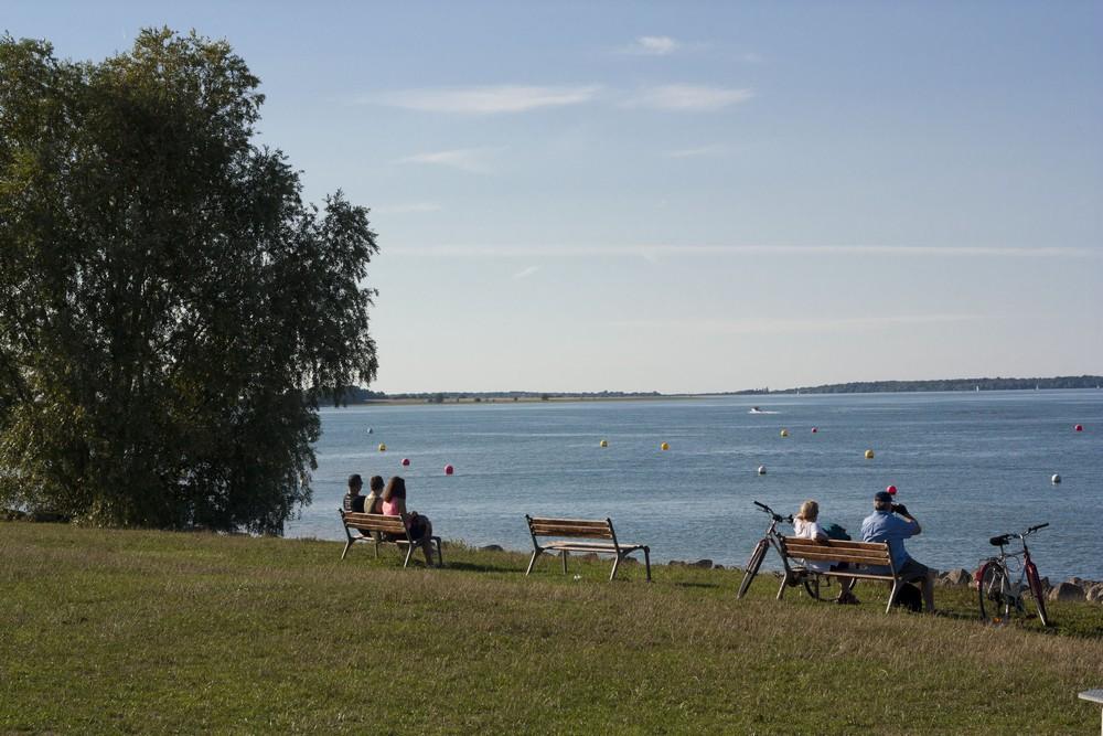 Lac du Der La Boucle Voyageuse (3)