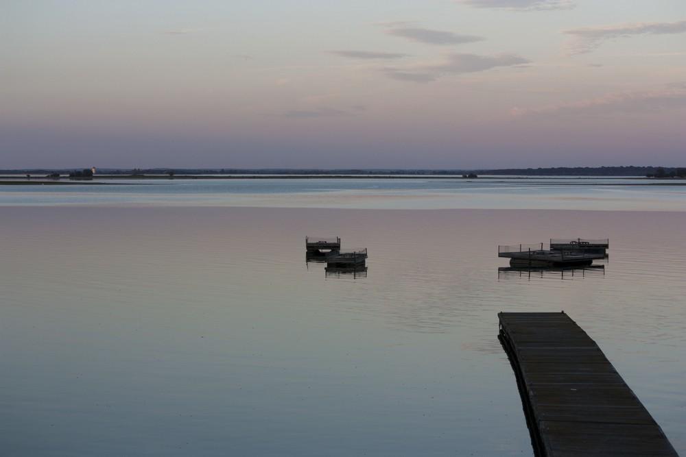 Lac du Der La Boucle Voyageuse (33)