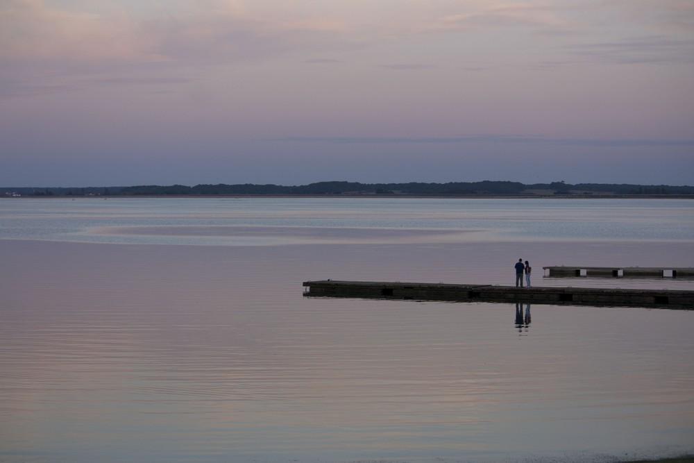 Lac du Der La Boucle Voyageuse (36)