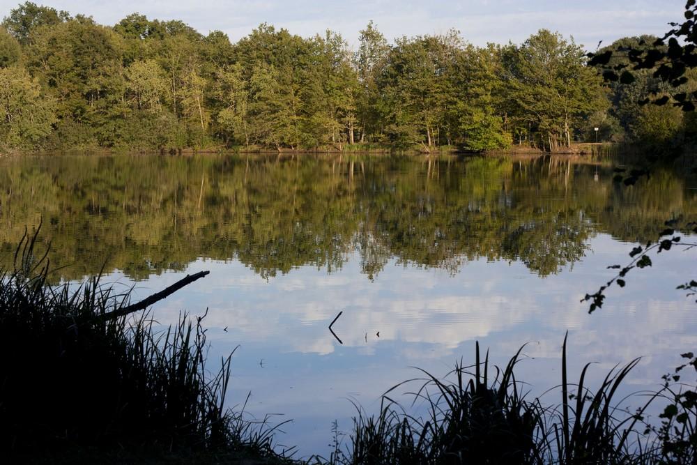 Lac du Der La Boucle Voyageuse (7)