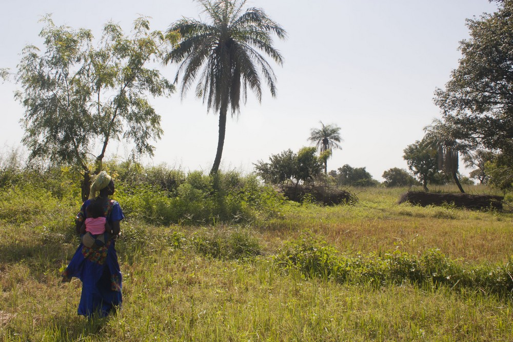 Senegal15_LaBoucleVoyageuse (5)