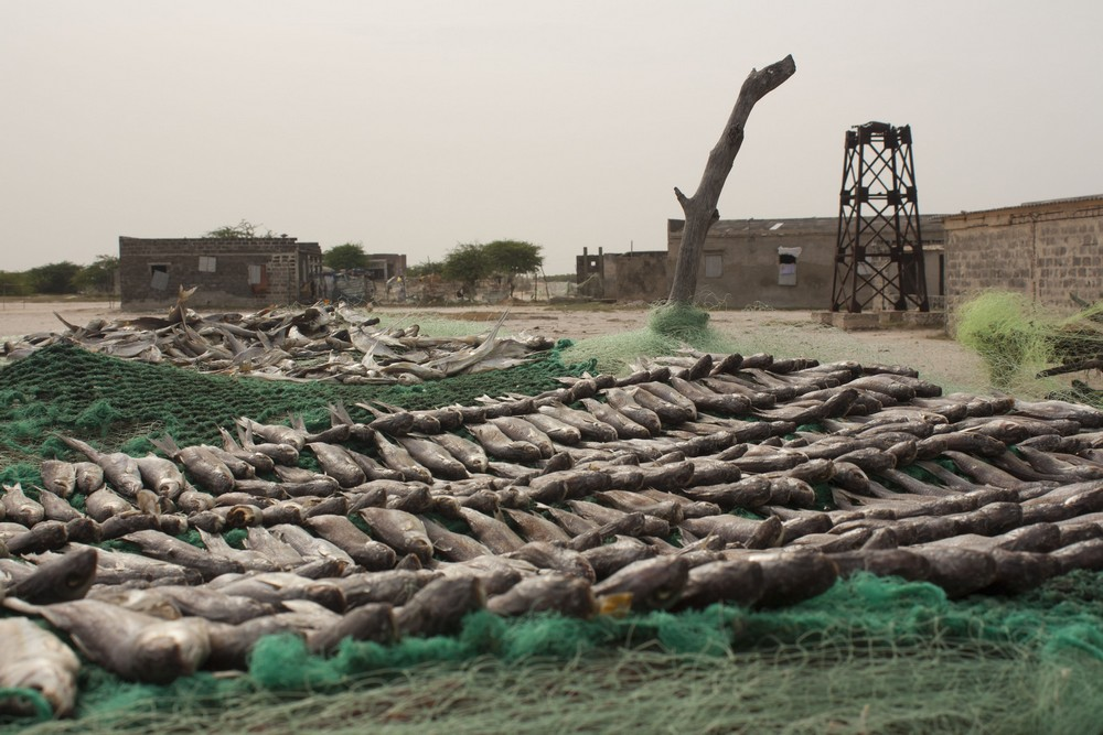 Senegal15_LaBoucleVoyageuse (7)