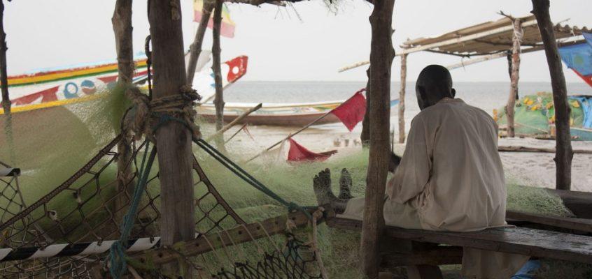 Mon premier voyage en Afrique : Destination Sénégal