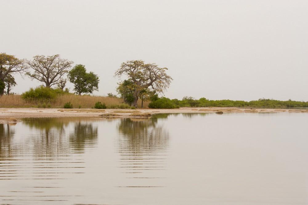 Ile-aux-coquillages_Senegal_La-Boucle-Voyageuse (3)