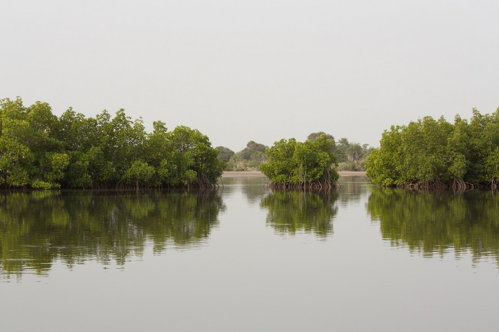 Pirogue_Sine-Saloum_Senegal_La-Boucle-Voyageuse (2)