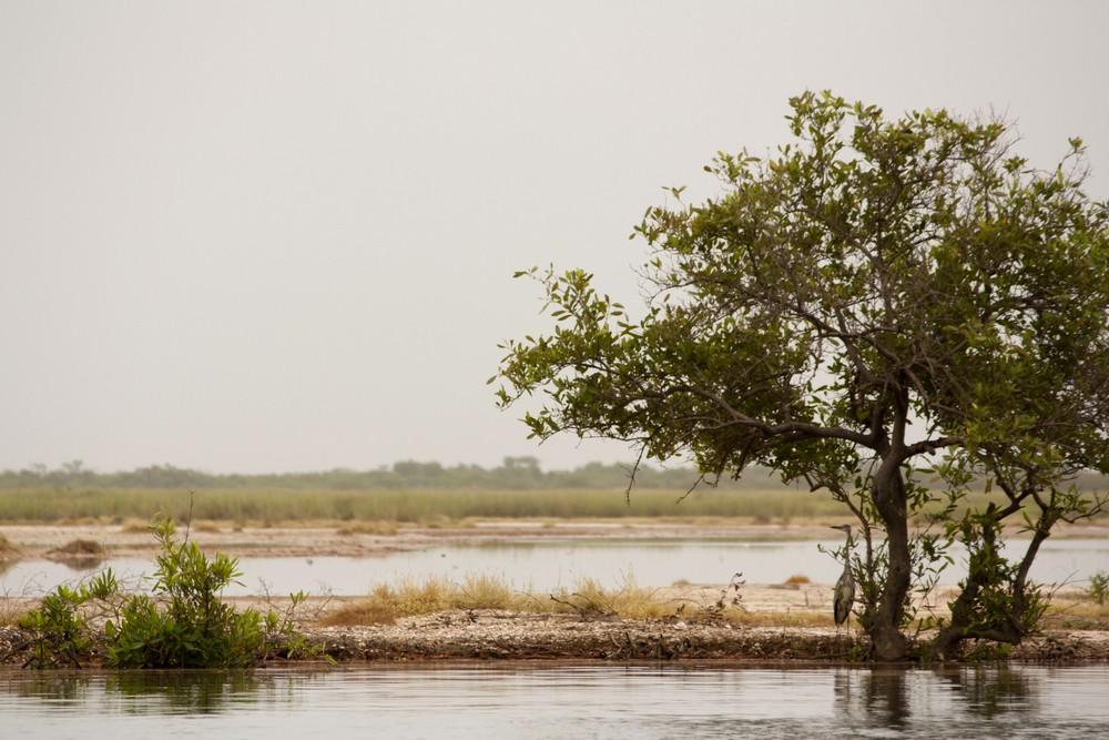 Pirogue_Sine-Saloum_Senegal_La-Boucle-Voyageuse (7)