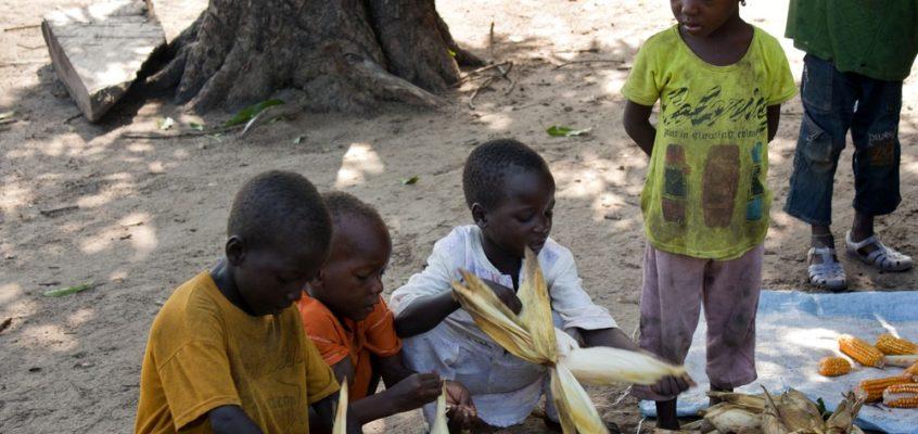 Sénégal – Carnet de voyage #2