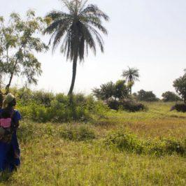 Sénégal – Carnet de voyage #3