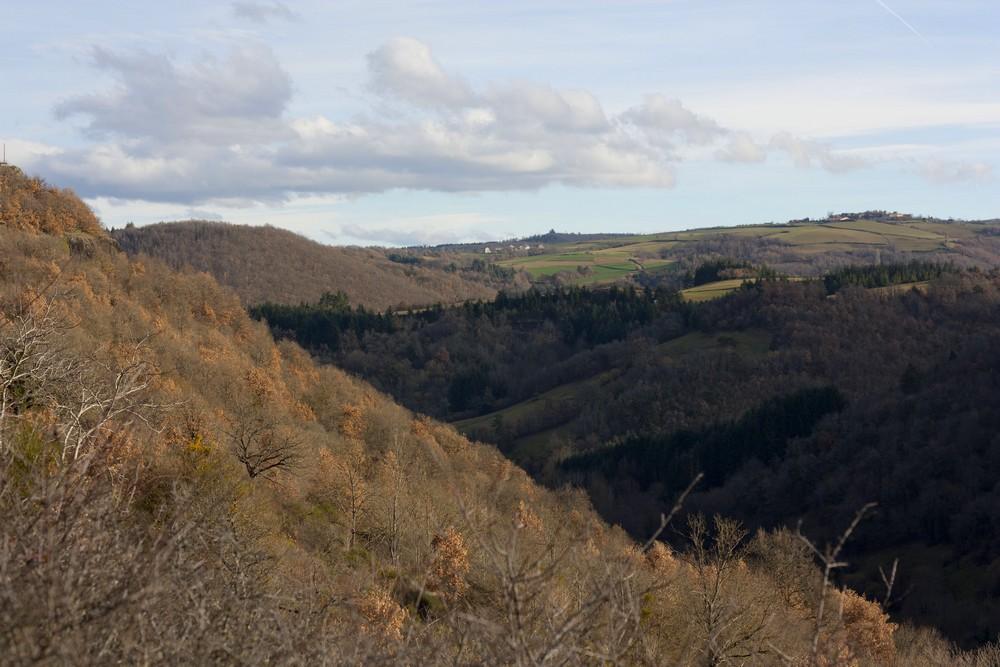 Hiver_Auvergne_Sans_neige (25)