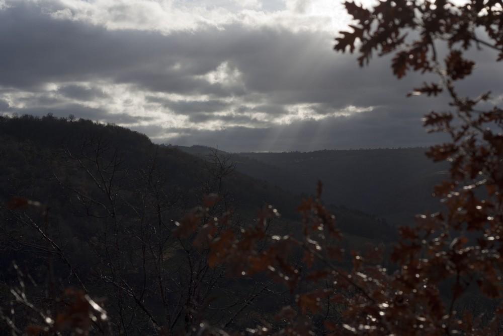 Hiver_Auvergne_Sans_neige (28)