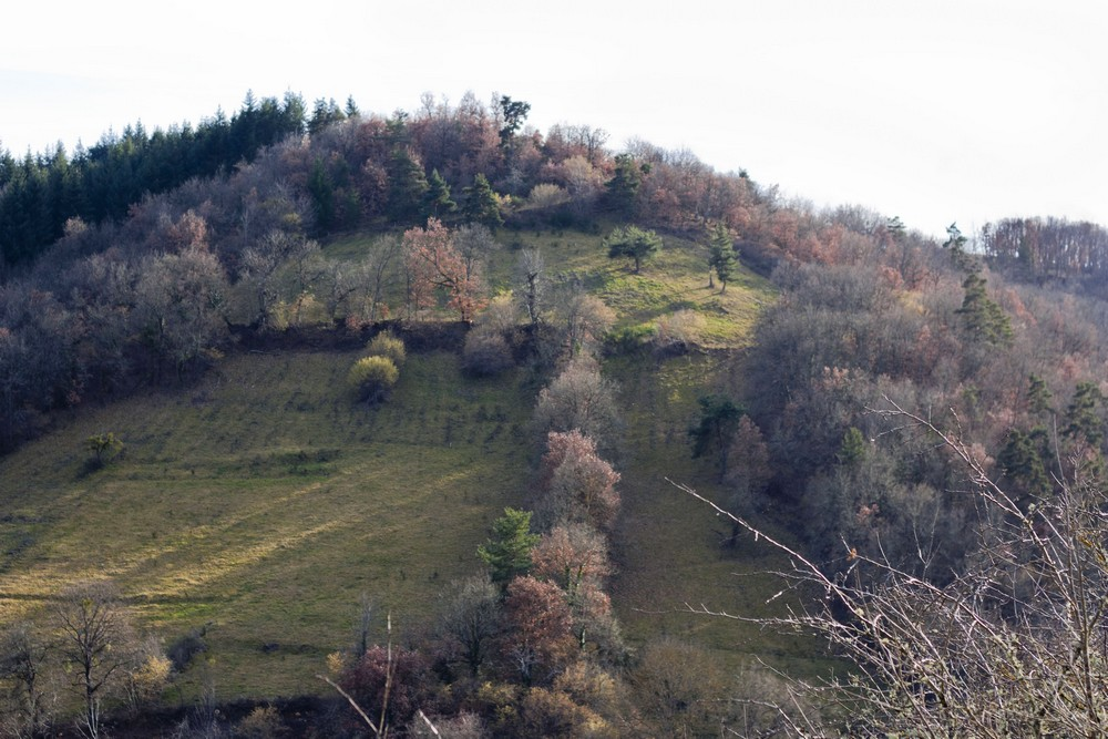 Hiver_Auvergne_Sans_neige (6)