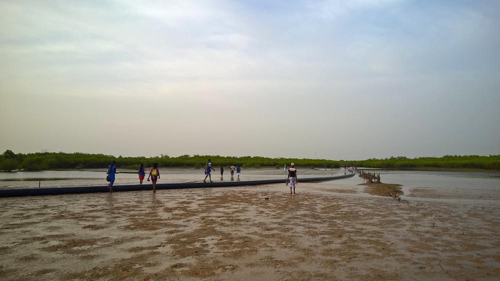 Sine-Saloum_Senegal_La-Boucle-Voyageuse (19)