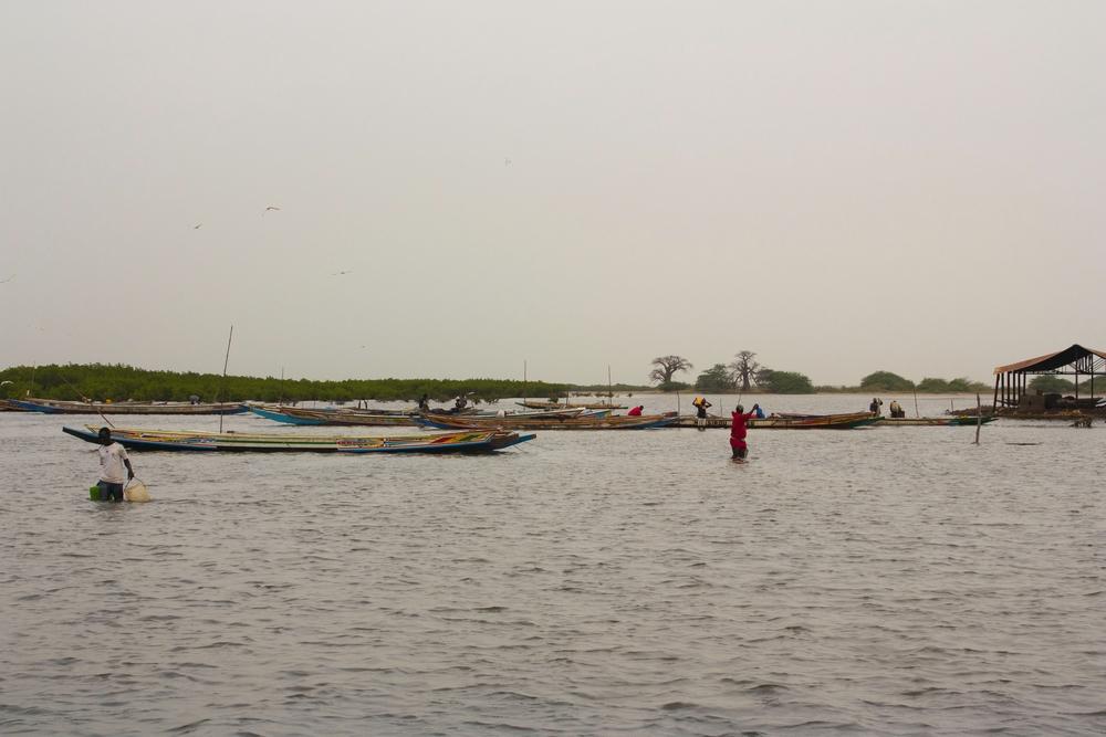 Sine-Saloum_Senegal_La-Boucle-Voyageuse (8)