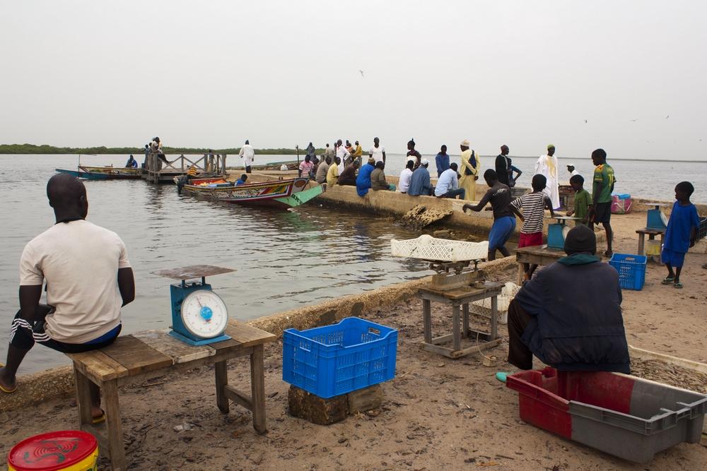 Sine-Saloum_Senegal_La-Boucle-Voyageuse (9)