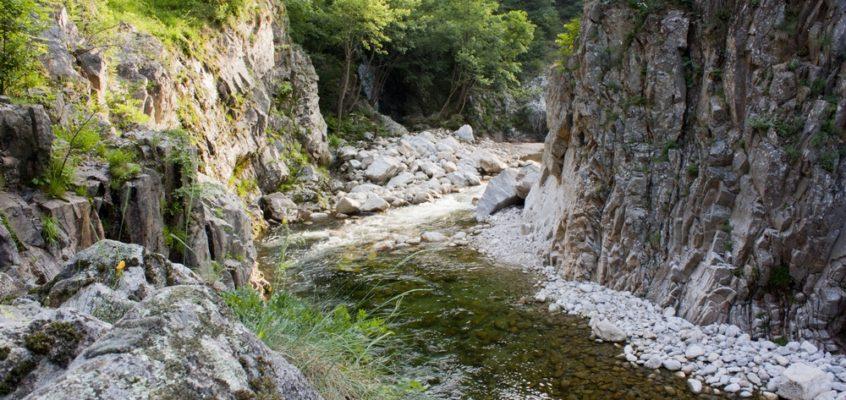 Ardèche : 50 nuances de vert