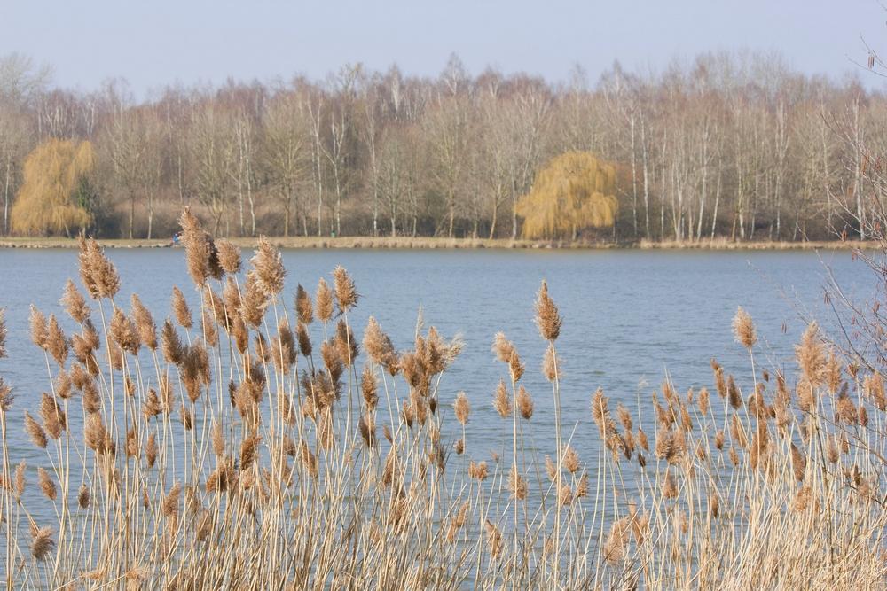 Fere-en-Tardenois-Nature_La-Boucle-Voyageuse (4)