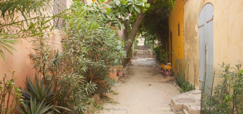 Sénégal – Carnet de voyage #6