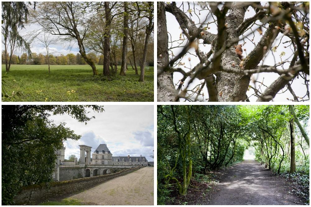 Château de Serrant_La-Boucle-Voyageuse (6)