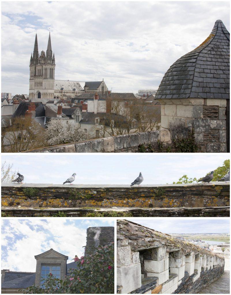 Chateau-Angers_La-Boucle-Voyageuse (5)