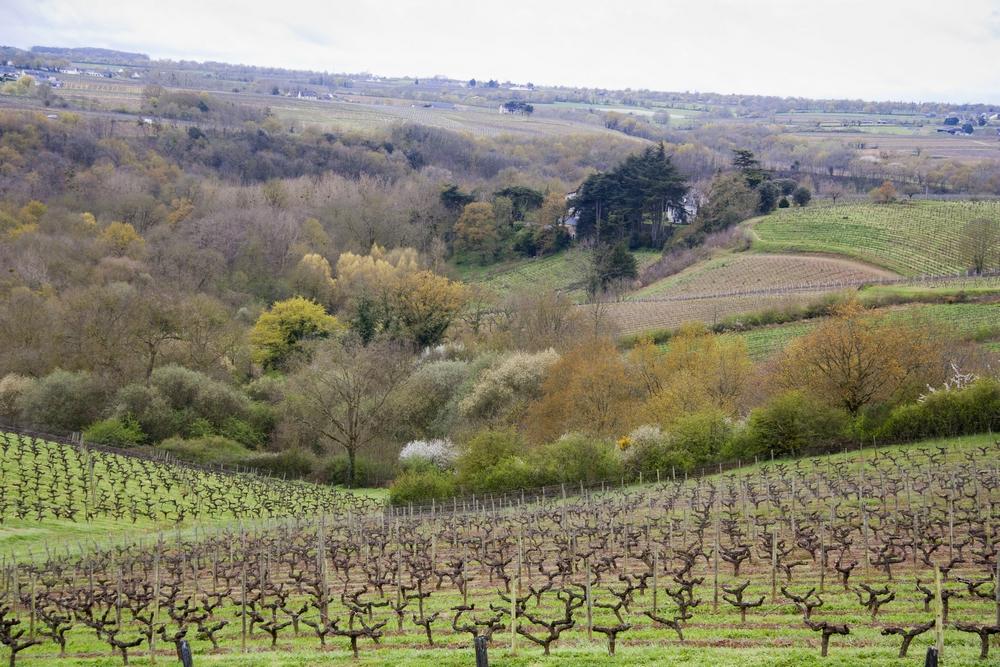 Domaine du Château de la Soucherie_La-Boucle-Voyageuse (5)