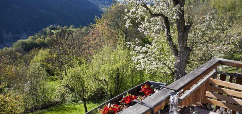 """Carnet suisse – Le Chalet """"Le Rucher"""""""