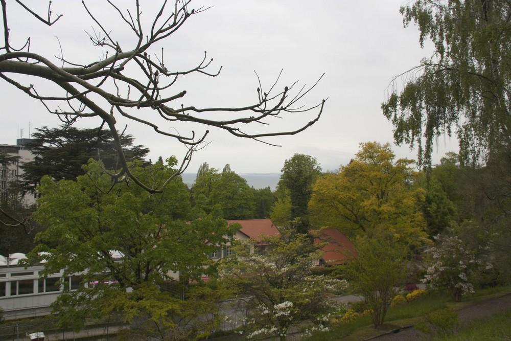 Lausanne_plui_La-Boucle-Voyageuse (7)