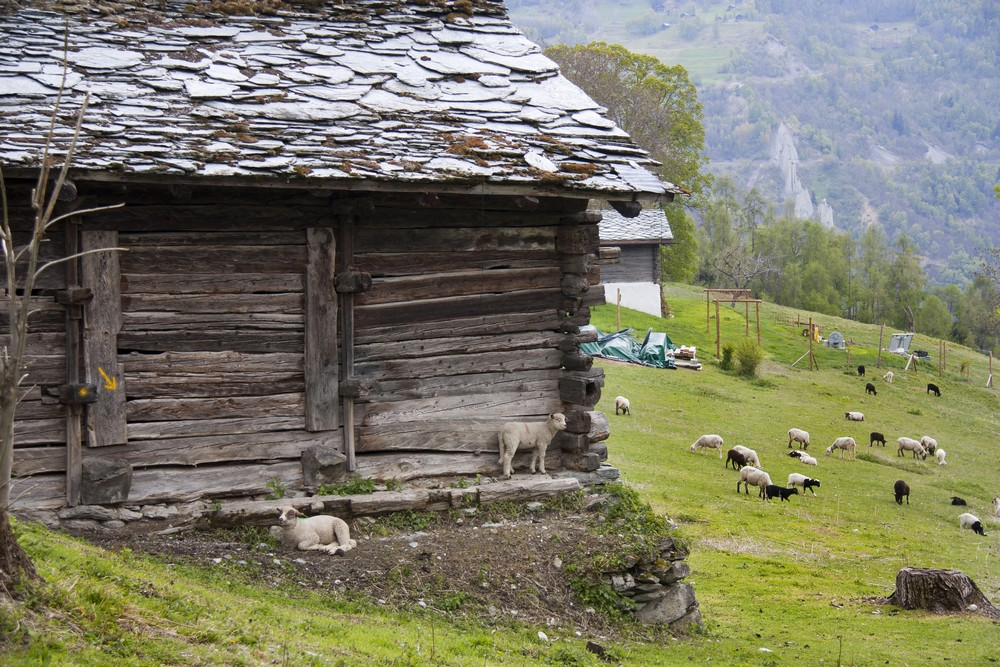 Val d'Herens_La-Boucle-Voyageuse (22)