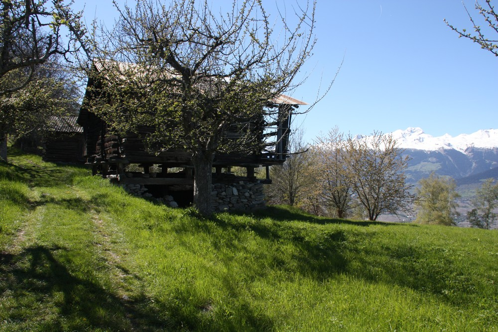 Val d'Herens_La-Boucle-Voyageuse (36)