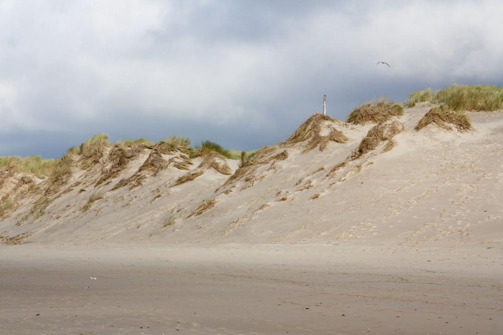 kite-surf-wissant_la-boucle-voyageuse-3