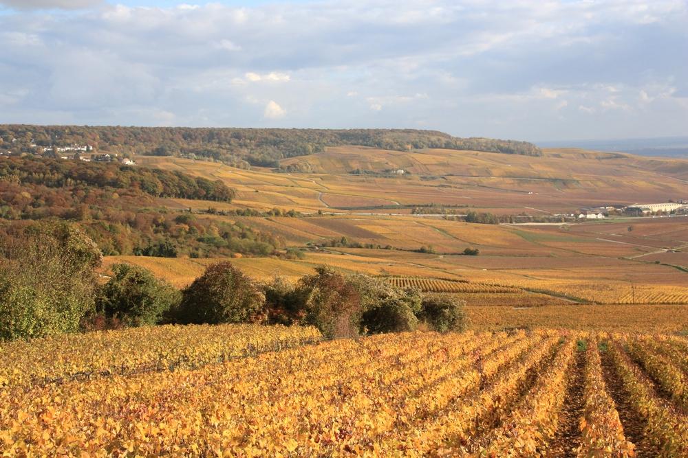 automne-champagne_la-boucle-voyageuse-12
