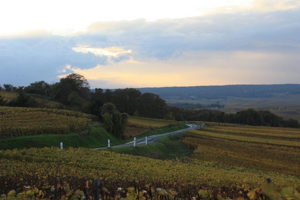 automne-champagne_la-boucle-voyageuse-25