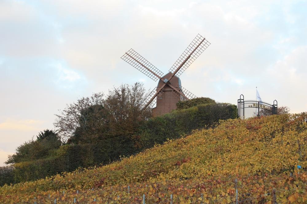 automne-champagne_la-boucle-voyageuse-29