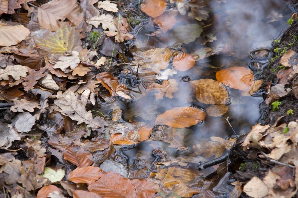 lac-des-vieilles-forges-automne-la-boucle-voyageuse-14