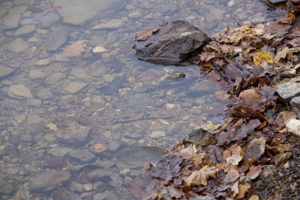 lac-des-vieilles-forges-automne-la-boucle-voyageuse-4