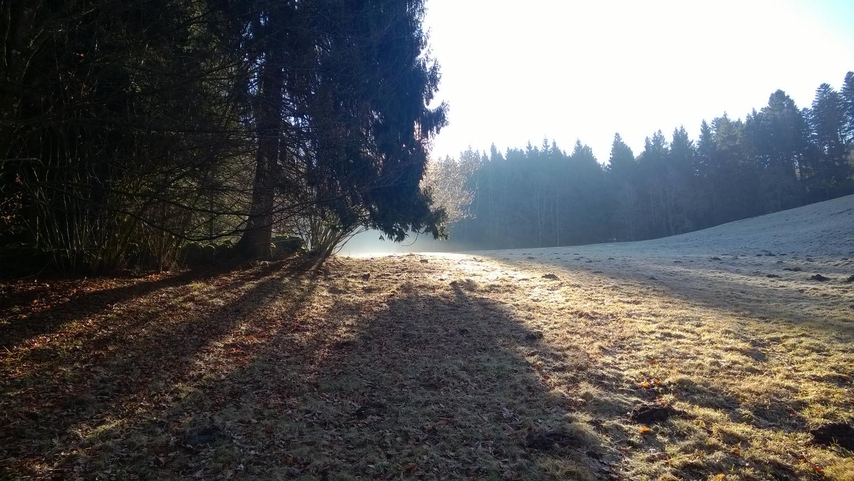 Les Vosges, 26 ans et les copains